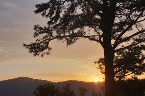 [포토] 태조산에서 맞이한 기해년 새해아침