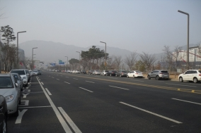 충남도청 주변 도로 점령한 불법주차 차량들